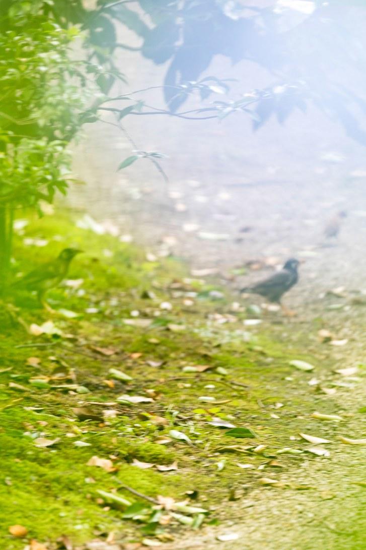 ginarte-yoshinori06.jpg