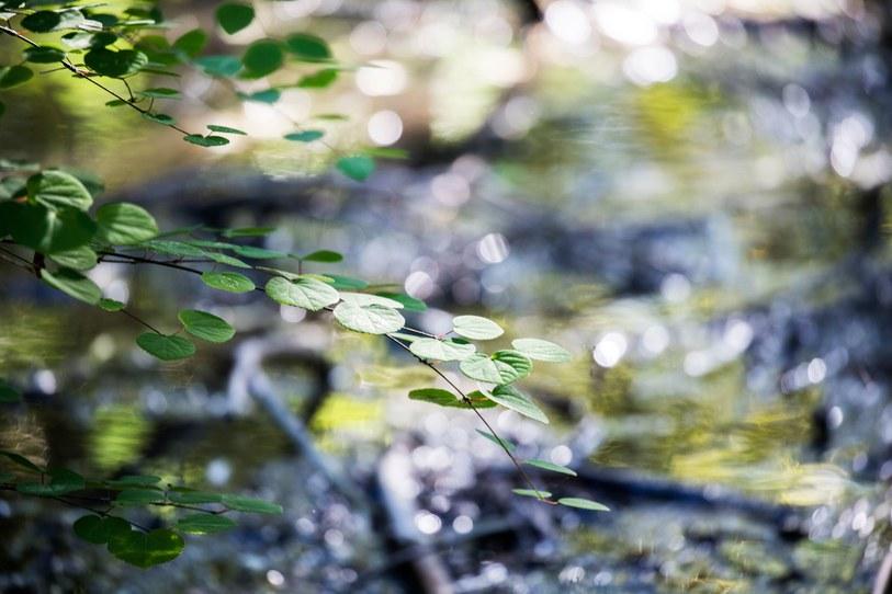 ginarte-yoshinori14.jpg
