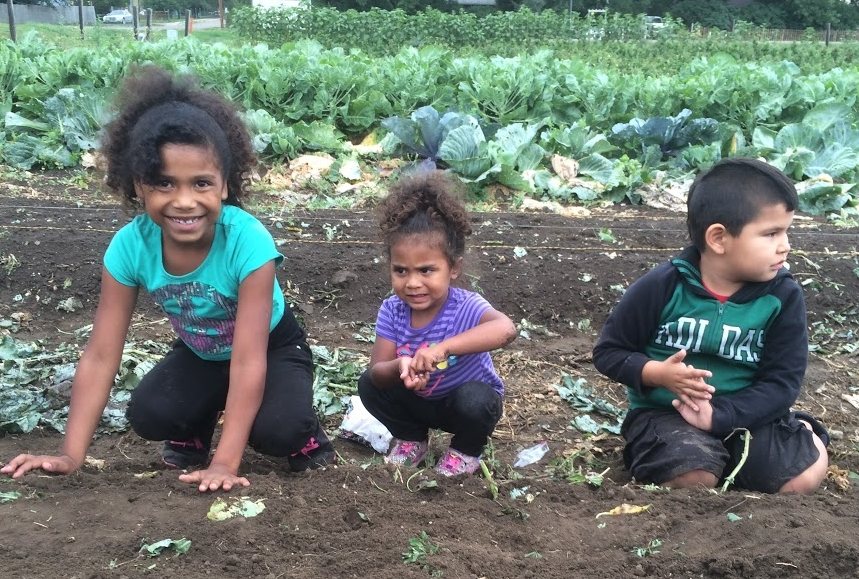 Cheyenne River Youth Project Garden
