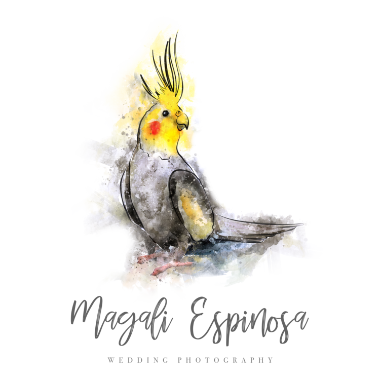 Fotografo de bodas | Magali Espinosa Destination Wedding Photographer based in Mexico