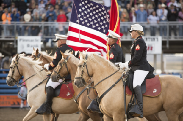 the mounted color guard -