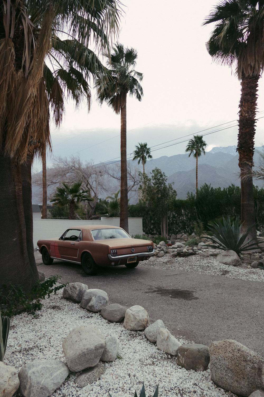 palmsprings7.jpg