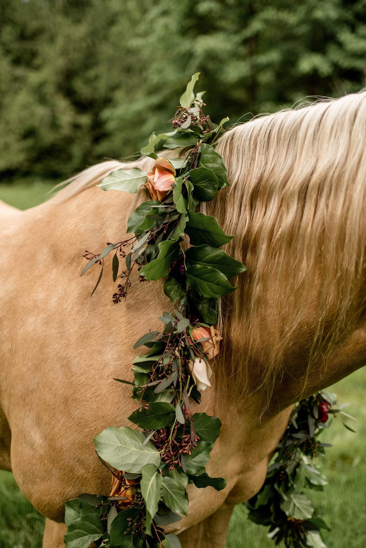 horse garland misty.jpg