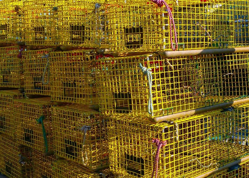 lobster cage.jpg