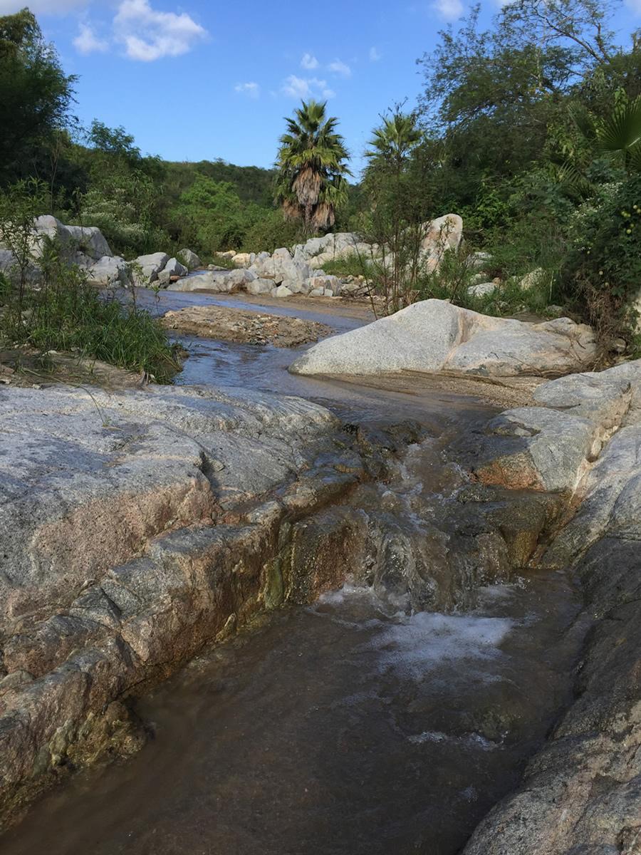 9_riverbed.jpg