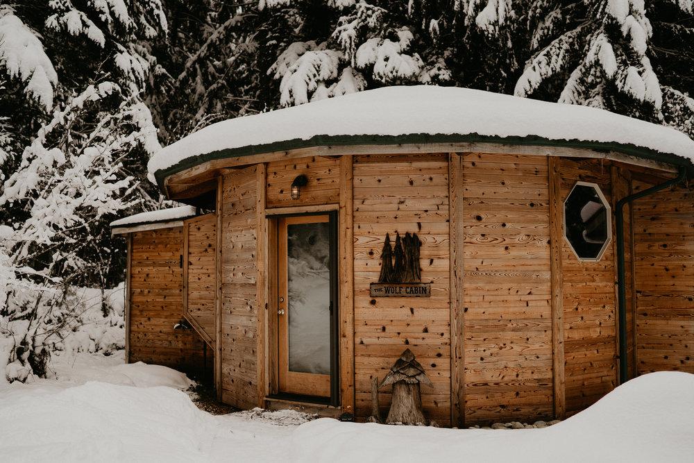 Snow Elopement Mount Rainier National Park