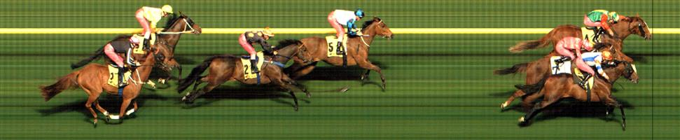 M.VALLEY (N) Race 3 No. 7 Open The Hatch @ $2.70 2.5 UNITS WIN   Result :  Close 3rd  at SP $3.80