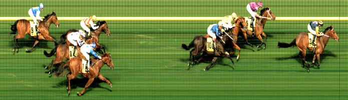 M.VALLEY (N) Race 1 No. 3 Kaplumpich @ $6 1 UNIT WIN   🏆🏆🏆🏆🏆Result :  1st  at SP $7.00, Best Tote of $7.30, Betfair at $8.78.