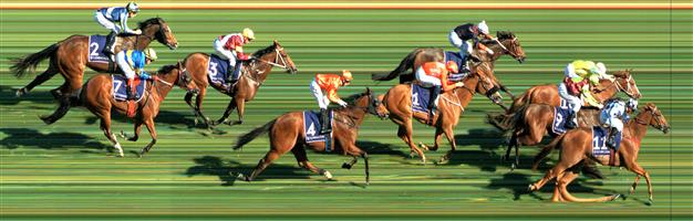 FLEMINGTON Race 6 No. 7 First Among Equals @ $6 1 UNIT   Result : Unplaced at SP $7