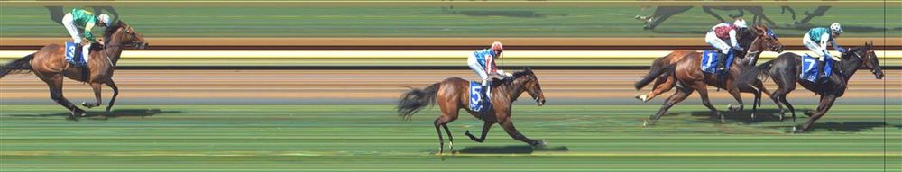 Tatura Race 3 No.1 Garbo @ $2.90 2.5 UNITS   Result :  2nd  at SP $2.50