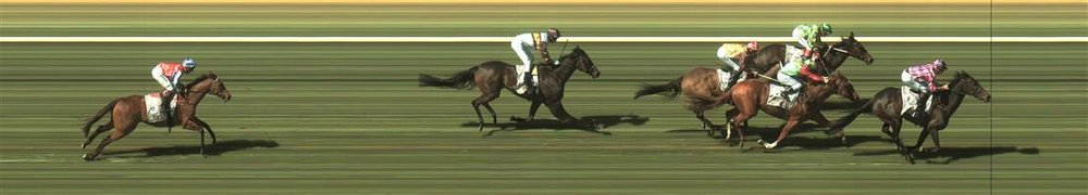BENDIGO R5 #7 Egyptian Gold @$6 1 UNIT WIN   Result :  2nd  at SP $6.00 (Comment: Did a commendable job with a tough run)