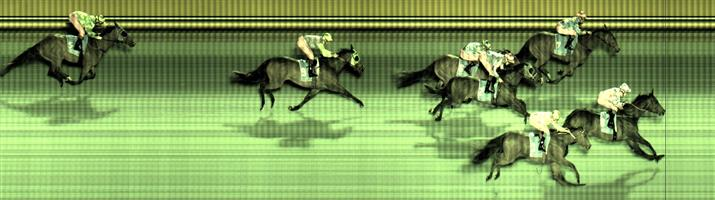 Cranbourne Race 7 No.3 Pleasuring @ $5 1.25 UNITS   Result :  3rd  at SP $6.50. Finished hard the outside to miss by just under a length.