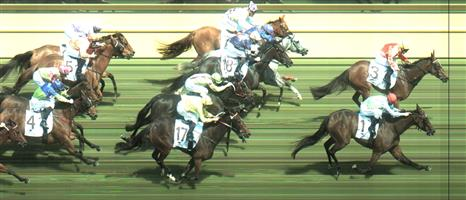Caulfield Race 4 No.14 Leathernlace @ $5.50 (1.12 UNITS WIN)   Result : Unplaced at SP $5.00. Tough run throughout being three / four wide the trip and finished off decently considering the run. Outcome -1.12 Units.