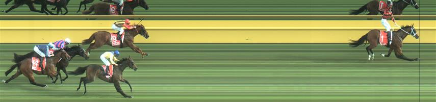 Caulfield Race 9 No.2 Native Soldier @ $7.50 (0.77 UNIT WIN),   Result : Unplaced at SP $5.50. Tried to put pressure on the hot favourite by taking the race to him, but couldn't sustain its run. Outcome -0.77 Units.