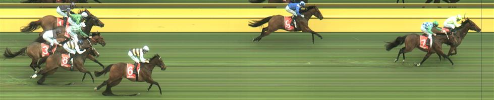 Caulfield Race 3 No.7 Fifty Stars @ $1.95 (2.5 UNITS WIN)   Result: 2nd  at SP $1.85. Chased all the way to the line, just couldn't overhaul winner Manuel who lead all the way. Outcome -2.50 Units.
