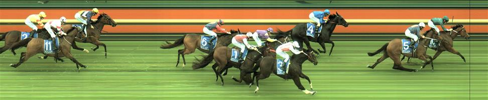 Moe Race 6 No.10 Superhard @ $4.40 (1.48 UNITS WIN)   🏆🏆🏆🏆🏆🏆Result : 1st at SP $4.20, Best Tote of $4.40, Betfair at $4.09. Bided its time and just off the turn made its move and fought hard to win by half a length. Outcome + 6.51 Units.