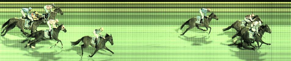 Pakenham Race 5 No.13 Zelsignoret  ↗️ Result :  Non Qualifier  - SP $11.00. Finished 4th.