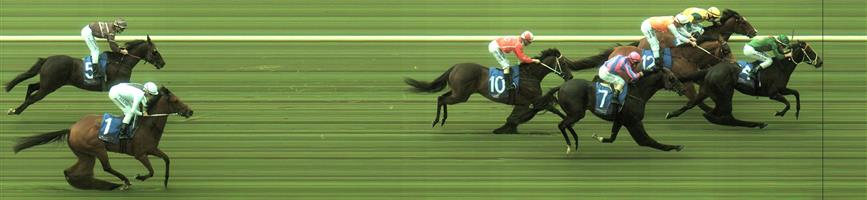 """Bendigo Race 2 No.2 Garbo @ $3.10 (2.39 UNITS WIN)  NB: When walking the Weir stables with him on Thursday, he noticed Garbo wasn't very settled in his stall - so he put him out to the paddock. He commented that """"it isn't ideal"""" for him so close to a race and he hoped he could fix that by Saturday. There has been support for him today, hence I'm hoping he's been fixed with Brad riding.   Result : Unplaced at SP $3.00. Found clean air just after turn but unable to run on and never posed a threat. Outcome -2.39 Units."""