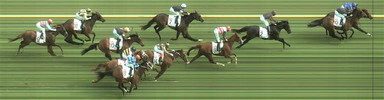 Caulfield Race 8 No.14 Kings Will Dream @ $5 (1.25 UNITS WIN)   Result : Unplaced at SP $5.50. In a slowly run race to about 800m from home, found a little trouble on the turn coming from the back though once clear did hit the line well. Result -1.25 Units.