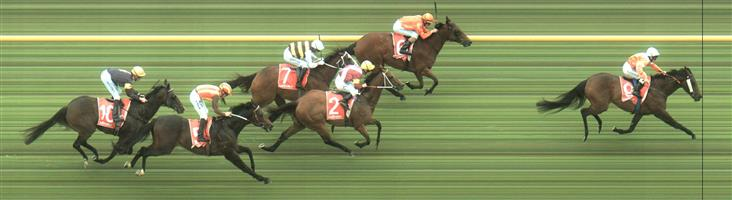 """Caulfield Race 10 No.5 Peaceful State @ $4.60 (1.48 UNITS WIN)  NB: Darren commented on Thursday that his horse """"has issues"""" but he's got his best horseman on him, John Allen.   Result : Unplaced at SP $7.00. Squeezed for room from turn for a bout 100m to 200m, though once clear did hit the line well but never able to threaten the leaders. Outcome -1.48 Units."""