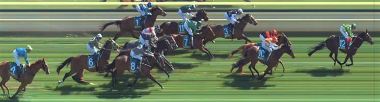 🏆🏆🏆🏆🏆 Stawell Race 7 No.12 Egyptian Gold @ $2.35 (use bet boost if you can) (2.5 UNITS WIN)   Result: 1st  at SP $2.30, Best Tote of $2.30, Betfair at $2.39. Wide run majority of the way, joined the lead at the 200m, kept on going and won well and comfortably in the end. Outcome +5.88 Units.