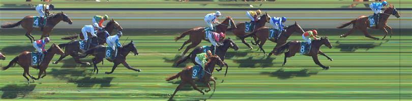 Stawell Race 8 No.12 Zoey Lass @ $10 *** watch price ***   Result : Non qualifier - Unplaced at SP $11.00