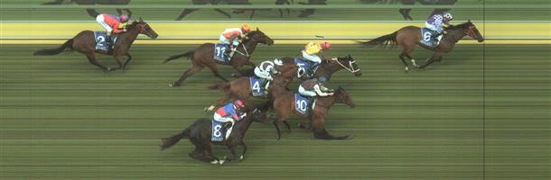 Kilmore Race 6 No.10 No Reward @ $4.80 (1.32 UNITS WIN)   Result: 3rd  at SP $6.00. Ran on from the back and hit the line really well, just too far back to make impression on the leaders. Outcome -1.32 Units.