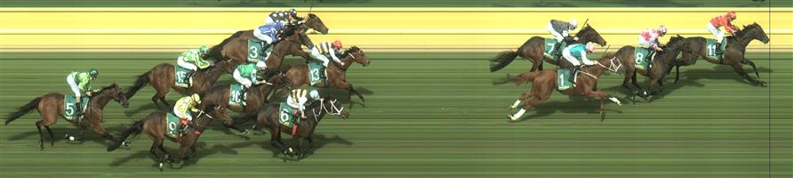 Geelong Race 7 No.9 Yogi @ $6 (1 UNIT WIN)   Result :  Non Qualifier  - Unplaced at SP $9.50