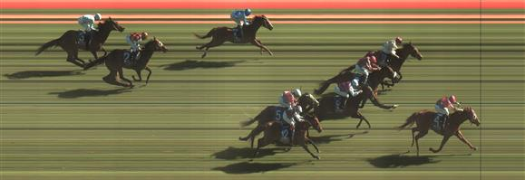 Ballarat Race 9 No.12 Our Chiquilla @ $11 *** Watch Price, has been in and out already this AM ***   Result: Non Qualifier  - Unplaced at SP $10.00