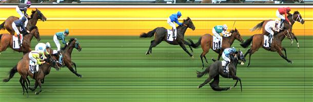 Moonee Valley Race 5 No.6 Ringerdingding @ $13 *** WATCH PRICE ***   Result : Non Qualifier – 3rd at SP $13.00