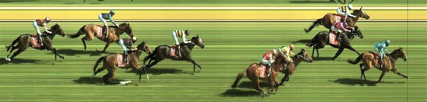Sale Race 7 No.11 Romancer @ $26 *** unlikely to hit our price ***   Result:  Non Qualifier - Unplaced at SP $12.00