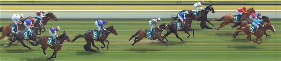 Stawell Race 4 No.5 Kragle @ $17 (unlikely on price)   Result : Non Qualifier - Unplaced at SP $26.00  ↗️Stawell Race 4 No.6 Midas Prince @ $7.50 (0.77 UNIT WIN) (watch)   Result : Non Qualifier - Unplaced at SP $14.00  Stawell Race 4 No.8 Westham @ $9.50 (watch price)   Result : Non Qualifier - Unplaced at SP $12.00  Stawell Race 4 No.13 Amon @ $19 (unlikely on price)   Result : Non Qualifier - Unplaced at SP $31.00