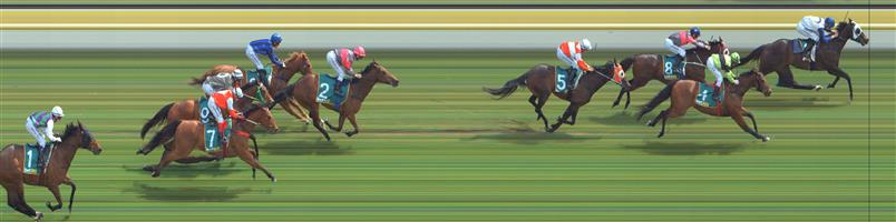 Stawell Race 5 No.7 Allspice @ $2.70 (2.5 UNITS WIN)   Result : Unplaced at SP $2.30. Hard ridden from the back before the turn and did little in the straight. Outcome -2.50 Units.