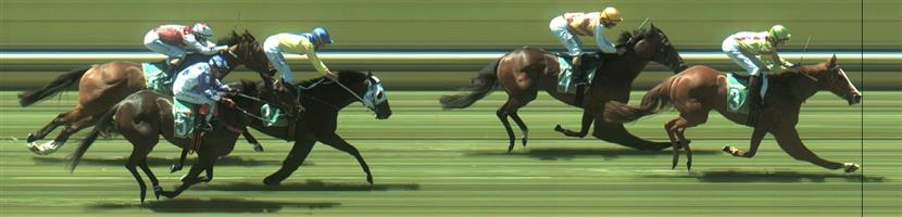📫 Bendigo Race 3 No. 2 Mr Genoa @ $2.20 (2.5 UNITS WIN)   Result : Unplaced at SP $2.30. Hard ridden in the straight, its run was taken just off the rails but was most likely not good enough to take it anway. Outcome -2.50 Units.   🏆🏆🏆🏆🏆🏆 Bendigo Race 3 No.3 No Emotion @ $9 - watch price (0.71 Units)   Result :  1st  at SP $8.00, Best Tote $9.00, Betfair $10.50. Came from the back and widest on the turn to finish too good for the small field. Outcome +5.71 Units.  Bendigo Race 3 No.5 Masterbrax @ $7 (0.84 UNIT WIN) - watch price   Result : Unplaced at SP $7.00. Made it move on the turn though unable to run despite having every chance. Outcome -0.84 Units.