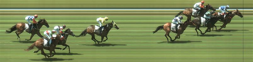 Bendigo Race 4 No.3 Sarkozy @ $13 - unlikely price   Result : Non Qualifier - Unplaced at SP $17.00   🏆🏆🏆🏆🏆🏆 Bendigo Race 4 No.6 Dennis @ $9.50 - watch price   Result :  1st  at SP $8.00, Best Tote $8.10, Betfair $9.49. Had the run of the race and took full advantage of it to hit the front with just under 200m to go and held on for the win. Outccome +5.71 Units.
