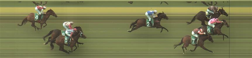 Kilmore Race 1 No.4 Maunahost @ $9.50 (watch price)   Result : Unplaced at SP $6.50. From the back, didn't come on in the straight and finished at the back. Outcome -0.91 Units.