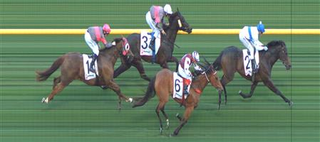 Moonee Valley Race 2 No.6 Our Chiquilla @ $5 (1.25 UNIT WIN)   Result: 2nd  at SP $4.80. Got shuffled back mid race though ran on well in the straight and finished well on the outside though winner won comfortably Outcome -1.25 Units.
