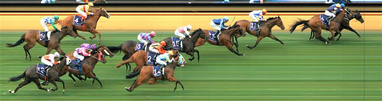 Flemington Race 1 No.11 Saccharo @ $14 (price unlikely)   Result : Non Qualifier - 4th at SP $12.00