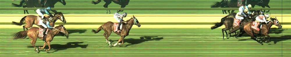 🏆🏆🏆🏆🏆🏆🏆 Mornington Race 8 No.4 Royal Ace @ $2.80 (2.5 UNITS WIN)   Result: 1st  at SP $5.50, Best Tote $4.80, Betfair $7.60. From the turn came into the race nicely and knuckled down to the task, wearing down the leaders for a good tough win. Outcome +7.00 Units.