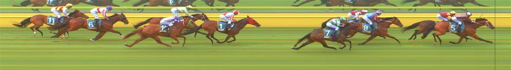 Echuca Race 3 No.3 No Parole @ $9, watch price   Result : Non Qualifier – 4th at SP $20.00  Echuca Race 3 No.8 Beetobee @ $3.50 (2 UNITS WIN)   Result :  3rd  at SP $5.00. Got to the outside and just grinded out to the line to nab third o the line. Outcome -2.00 Units.  Echuca Race 3 No.11 Tricky Mix @ $4 (1.67 UNITS WIN)   Result : Unplaced at SP $6.50. After being in the first couple, when the pressure was applied from the turn Tricky Mix found nothing and dropped back through the field. Outcome -1.67 Units.