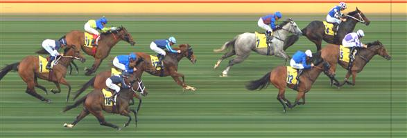 Flemington Race 10 No.8 So Far Sokool @ $26 - price unlikely   Result : Non Qualifier – Unplaced at SP $19.00  Flemington Race 10 No.16 Split Lip @ $19 - price unlikely   Result : Non Qualifier – Unplaced at SP $21.00  Flemington Race 10 No.17 Spanner Head @ $19 - price unlikely   Result : Non Qualifier - Unplaced at SP $21.00