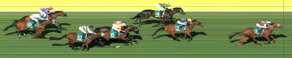 Kyneton Race 8 No.5 Tall Ship @ $21 - price unlikely   Result : Non Qualifier - Unplaced at SP $31.00  Kyneton Race 8 No.6 Snitzepeg@$4.40 (1.48 UNITS WIN)   Result : Unplaced at SP $3.10. Followed the winner, Another Coldie, for majority of the run until just before the turn when Another Coldie accelerated and Snitzepeg found little. Outcome -1.48 Units.
