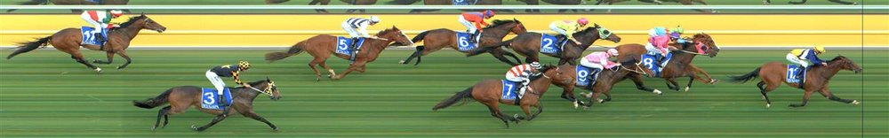 Kyneton Race 9 No.7 Broadway And First @ $18 - price unlikely   Result : Non Qualifier - Unplaced at SP $21.00