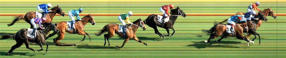 Flemington Race 8 No.9 Extra Brut @ $9.50 - also SSSS play   Result :  3rd  at SP $4.60. Good market support through out the day. Settled at the tail. Followed Blair House and had to go off heels at the 300m mark which lost it about a length and momentum which probably cost it the race. Good run though. Outcome -1.39 Units.