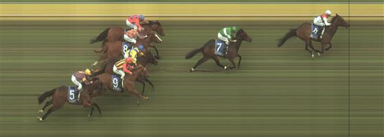 Kilmore Race 4 No.8 Skalacci @ $7.50 (0.77 UNIT WIN) ***   Result: 4th  at SP $7.50. Followed the winner majority of the race but there was always a gap which Skalacci couldn't reduce in the straight. Outcome -0.77 Units.