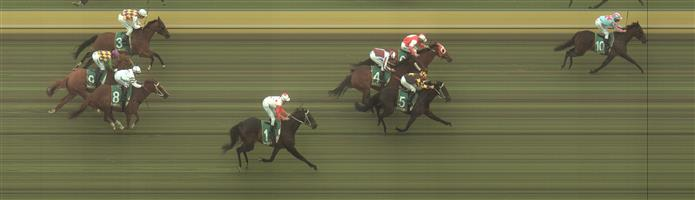 Kilmore Race 5 No.6 Allspice @ $2.90 (2.5 UNITS WIN)   Result :  2nd  at SP $6.00. Decent drift as market came for the new favourite and eventual winner Etana. After sitting in second, outside the leader and winner, was dropped at the turn and did well to hang on for second. Outcome -2.50 Units.