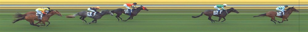 Bendigo Race 1 No.2 Dunmam @ $2.40 (2.5 UNITS WIN)   Result:  Unplaced at SP $2.25. Was in the 1-1 position during the run but when under pressure fell away and finished at the back. Outcome -2.50 Units.