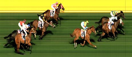 ↗️Moonee Valley Race 8 No.5 Prevailing Winds @ $5 (1.25 UNITS WIN) ***   Result : Non Qualifier - Unplaced at SP $8.50