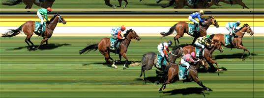 ↗️Dunkeld Race 4 No.5 Sarkozy @ $6.50 (0.91 UNIT WIN)   Result : Non Qualifier - Unplaced at SP $10.00
