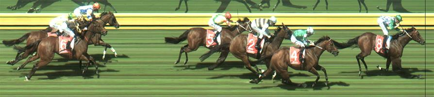 Sandown Race 6 No.4 Holy Snow @ $8 (0.72 UNIT WIN)   Result :  2nd  at SP $7.50. From the tail, was widest on the turn and worked home well to finish 2nd though winner, Fifty Stars, way too good. Outcome -0.72 Units.   🏆🏆🏆🏆🏆 Sandown Race 6 No.8 Fifty Stars @ $1.95 (2.5 UNITS WIN)   Result :  1st  at SP $1.70, Best Tote $1.70, Betfair $1.75. Found a split at about the 200m mark and exploded away for a comfortable win on the line. Did the job it was expected to do. Outcome +4.88 Units.   Side Note : Found the Quinella and Exacta which on Super Tab paid $4.60 and $6.40.